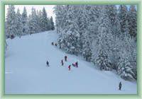 Čertovica - Downhill course