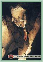 Cave of Dead Bats
