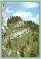 Rocks at Ohnište