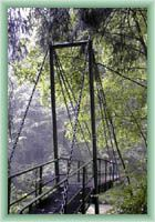 Stream Biely potok - Bridge