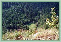 Tomašovský View